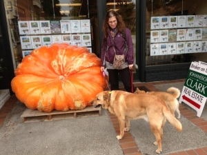 The biggest pumpkin in Washington State
